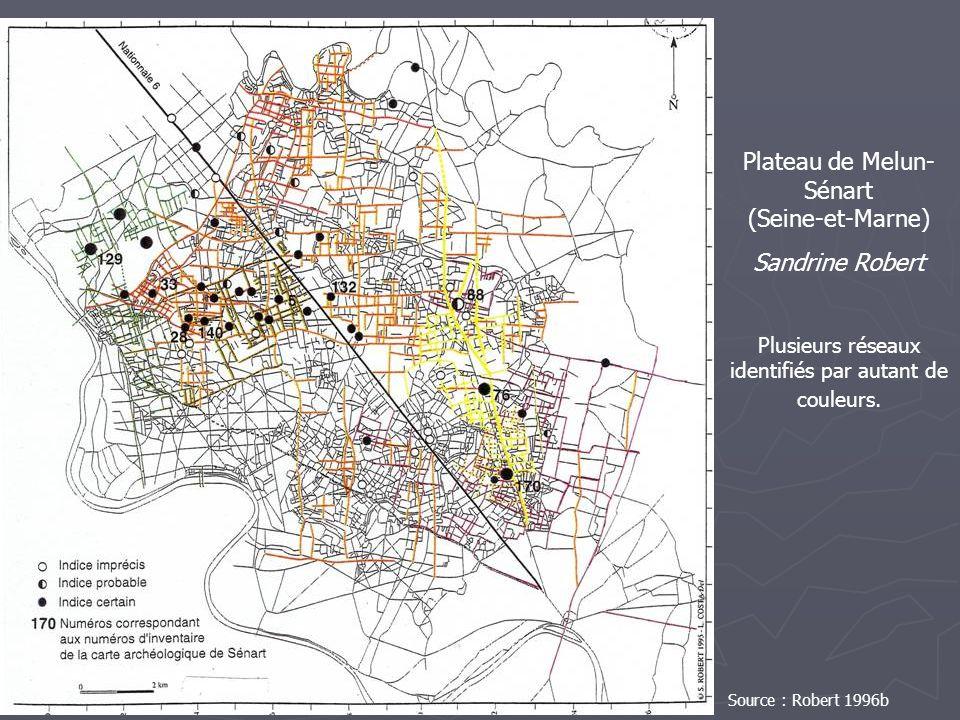 Plateau de Melun- Sénart (Seine-et-Marne) Sandrine Robert Plusieurs réseaux identifiés par autant de couleurs. Source : Robert 1996b