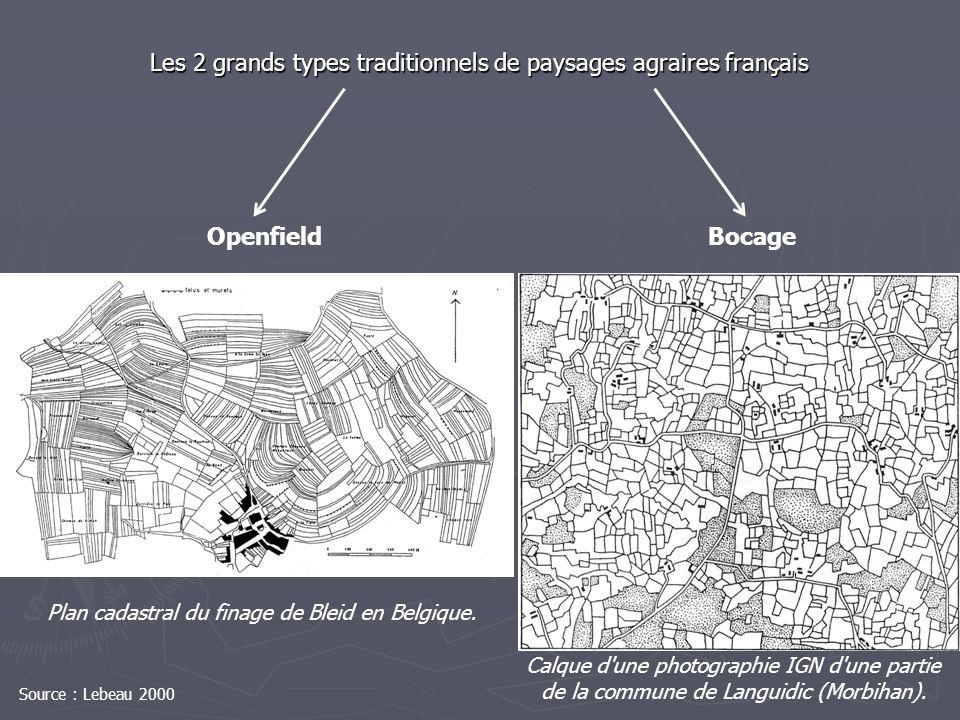Plan cadastral du finage de Bleid en Belgique. Calque d'une photographie IGN d'une partie de la commune de Languidic (Morbihan). OpenfieldBocage Les 2