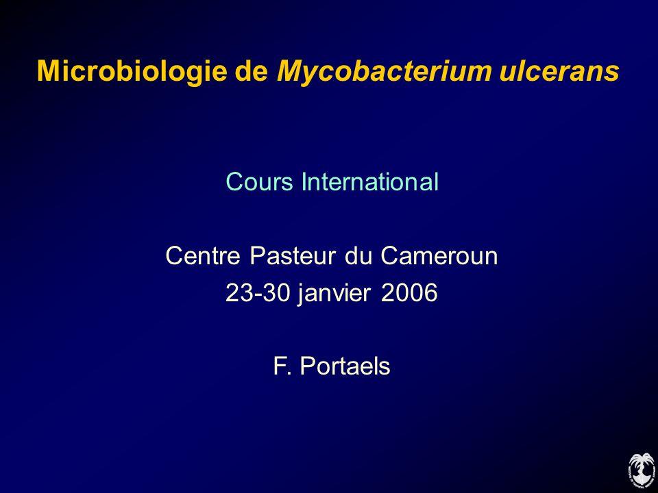 Microbiologie de Mycobacterium ulcerans Cours International Centre Pasteur du Cameroun 23-30 janvier 2006 F. Portaels