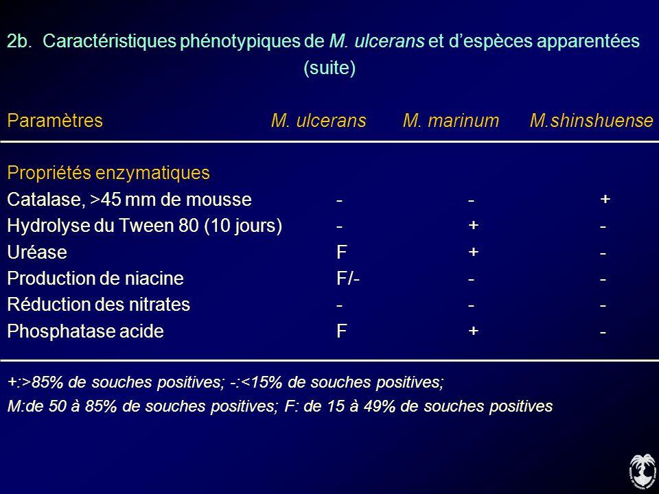 2b. Caractéristiques phénotypiques de M. ulcerans et despèces apparentées (suite) ParamètresM. ulceransM. marinum M.shinshuense Propriétés enzymatique
