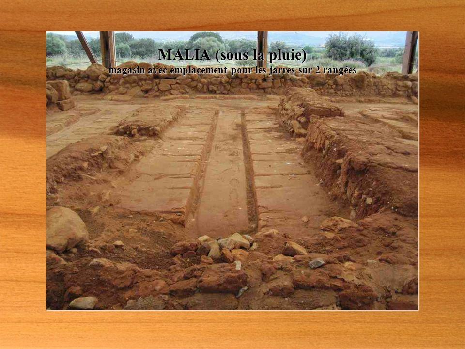 MALIA construit à la même époque que KNOSSOS Jarre découverte lors des fouilles vers 1920