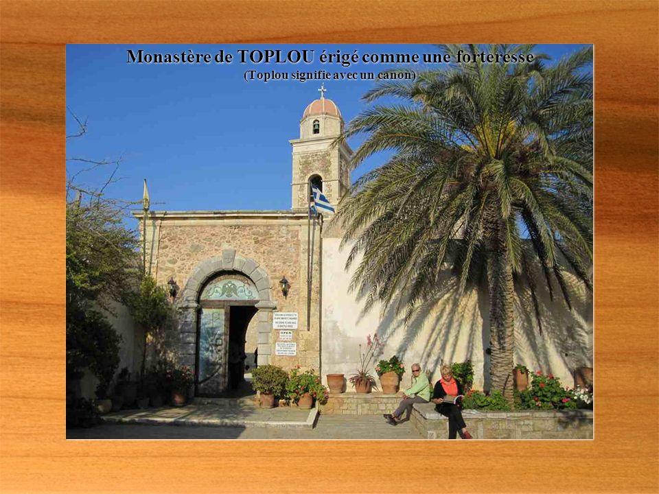 PALMERAIE DE VAÏ plus de 5000 palmiers