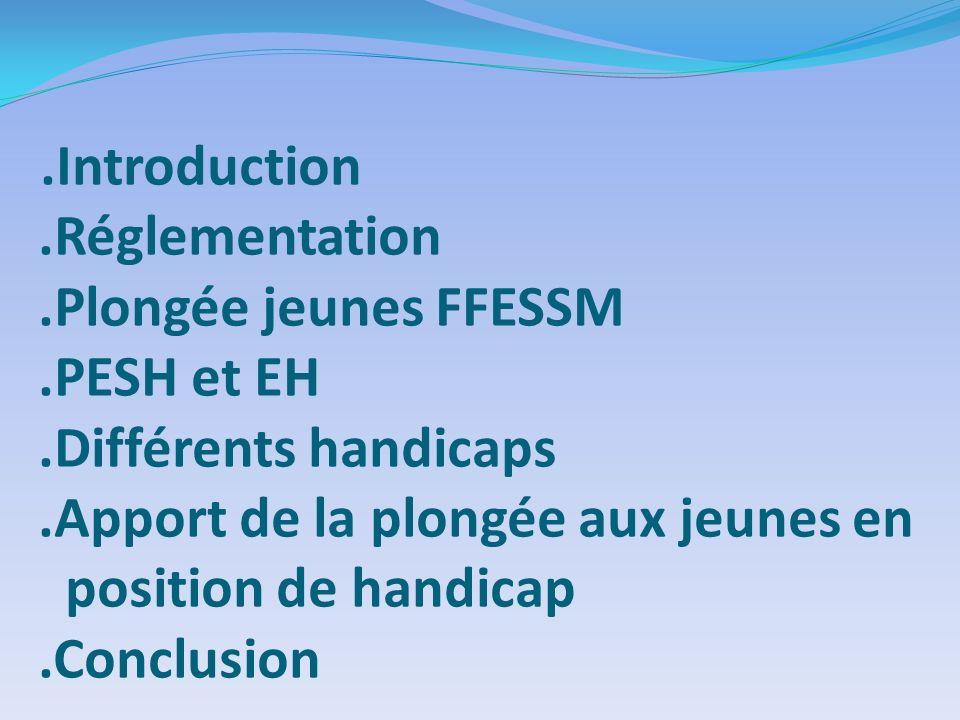 .Introduction.Réglementation.Plongée jeunes FFESSM.PESH et EH.Différents handicaps.Apport de la plongée aux jeunes en position de handicap.Conclusion