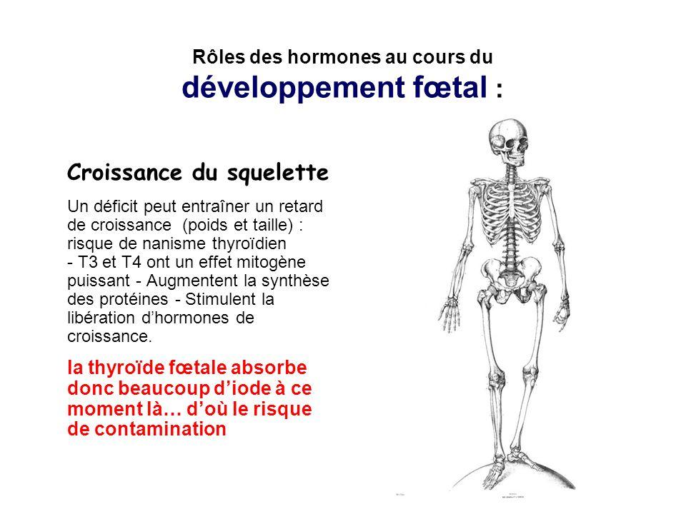 Fonction des hormones au cours de la 1ère semaine post-natale Les hormones thyroïdiennes stimulent la maturation du cerveau, la croissance des os longs… La thyroïde du bébé absorbe donc beaucoup diode à ce moment là… radioactif ou non