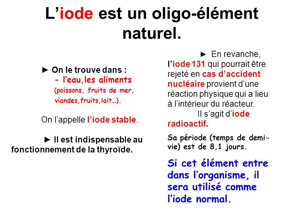 Rôle biologique de l iode L iode est un composant des hormones thyroïdiennes, fabriquées au niveau d une glande : la thyroïde I I I I I I II