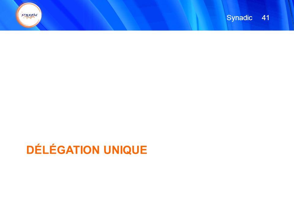 DÉLÉGATION UNIQUE 41 Synadic