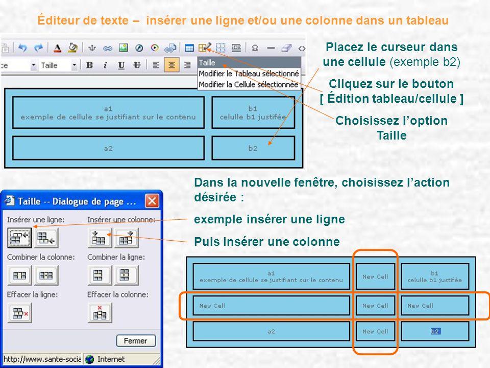 Éditeur de texte – insérer une ligne et/ou une colonne dans un tableau Placez le curseur dans une cellule (exemple b2) Cliquez sur le bouton [ Édition