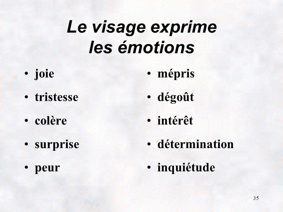 35 Le visage exprime les émotions joie tristesse colère surprise peur mépris dégoût intérêt détermination inquiétude