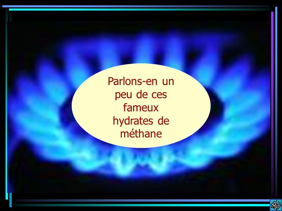 Parlons-en un peu de ces fameux hydrates de méthane