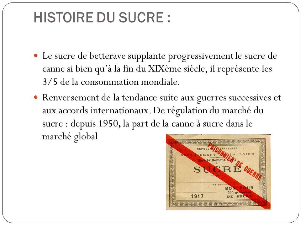 HISTOIRE DU SUCRE : Le sucre de betterave supplante progressivement le sucre de canne si bien quà la fin du XIXème siècle, il représente les 3/5 de la