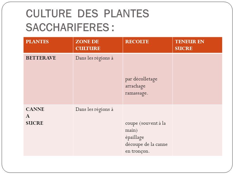 CULTURE DES PLANTES SACCHARIFERES : PLANTESZONE DE CULTURE RECOLTETENEUR EN SUCRE BETTERAVEDans les régions à par décolletage arrachage ramassage. CAN