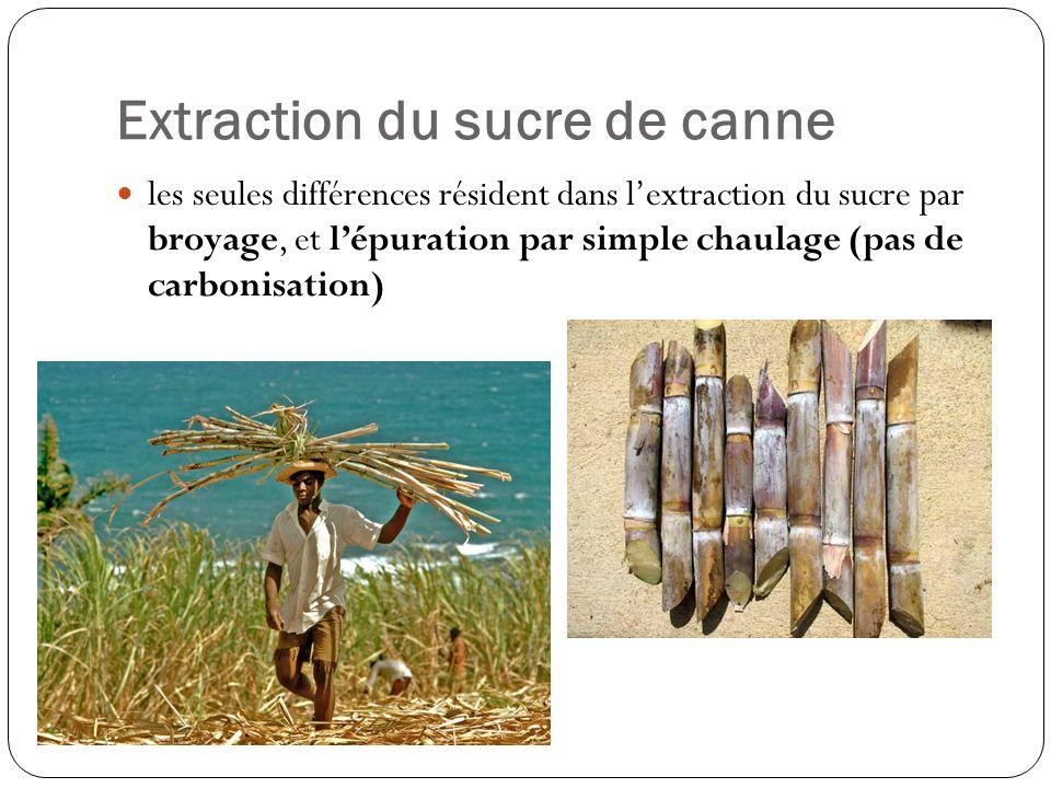Extraction du sucre de canne les seules différences résident dans lextraction du sucre par broyage, et lépuration par simple chaulage (pas de carbonis