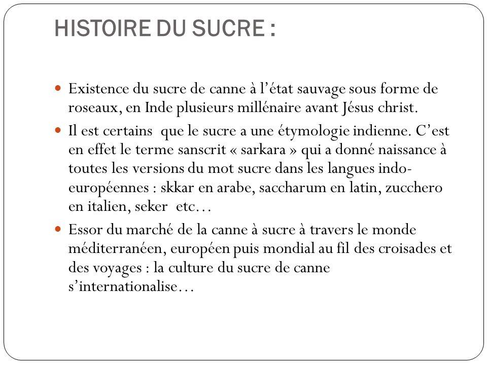 HISTOIRE DU SUCRE : Connaissance du sucre de canne dans le monde entier à la fin du XIVème siècle : lEurope en est le plus gros consommateur (Venise : grande capitale sucrière de lEurope, avant Lisbonne et Anvers au XVI ème siècle).