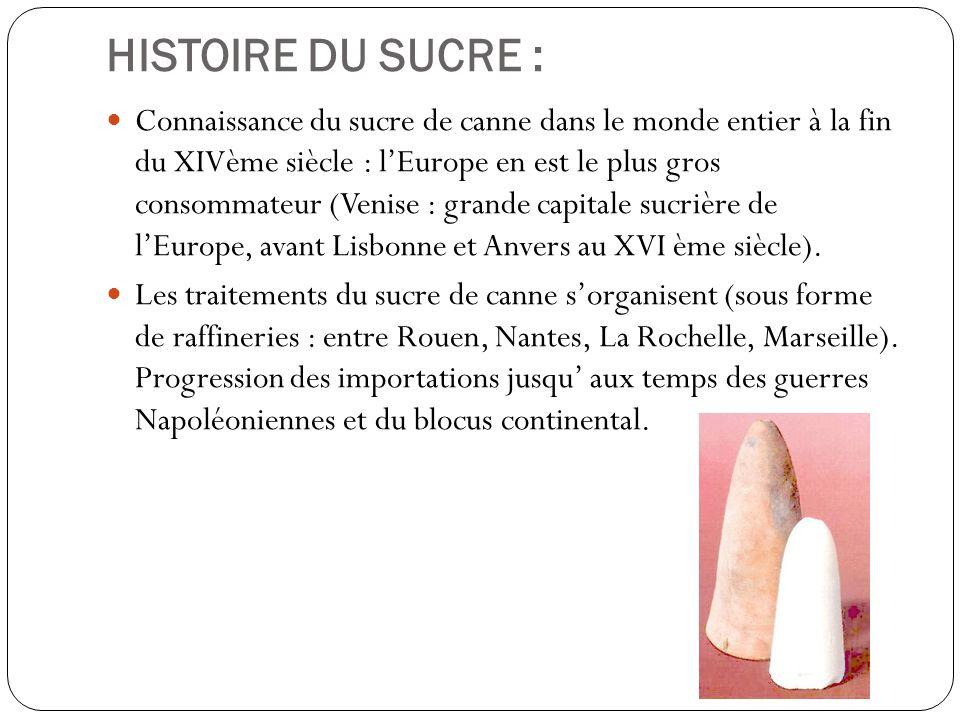 HISTOIRE DU SUCRE : Connaissance du sucre de canne dans le monde entier à la fin du XIVème siècle : lEurope en est le plus gros consommateur (Venise :