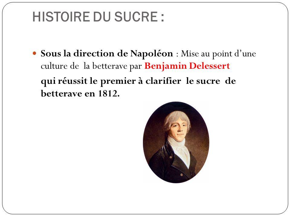 HISTOIRE DU SUCRE : Sous la direction de Napoléon : Mise au point dune culture de la betterave par Benjamin Delessert qui réussit le premier à clarifi