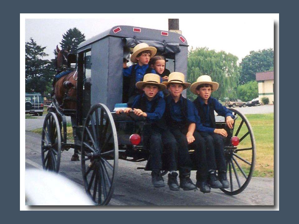 Les Amish sont regroupés en petites communautés. Une communauté regroupe environ 35 à 40 familles, soit 250 à 300 personnes, sous l'autorité d'un patr