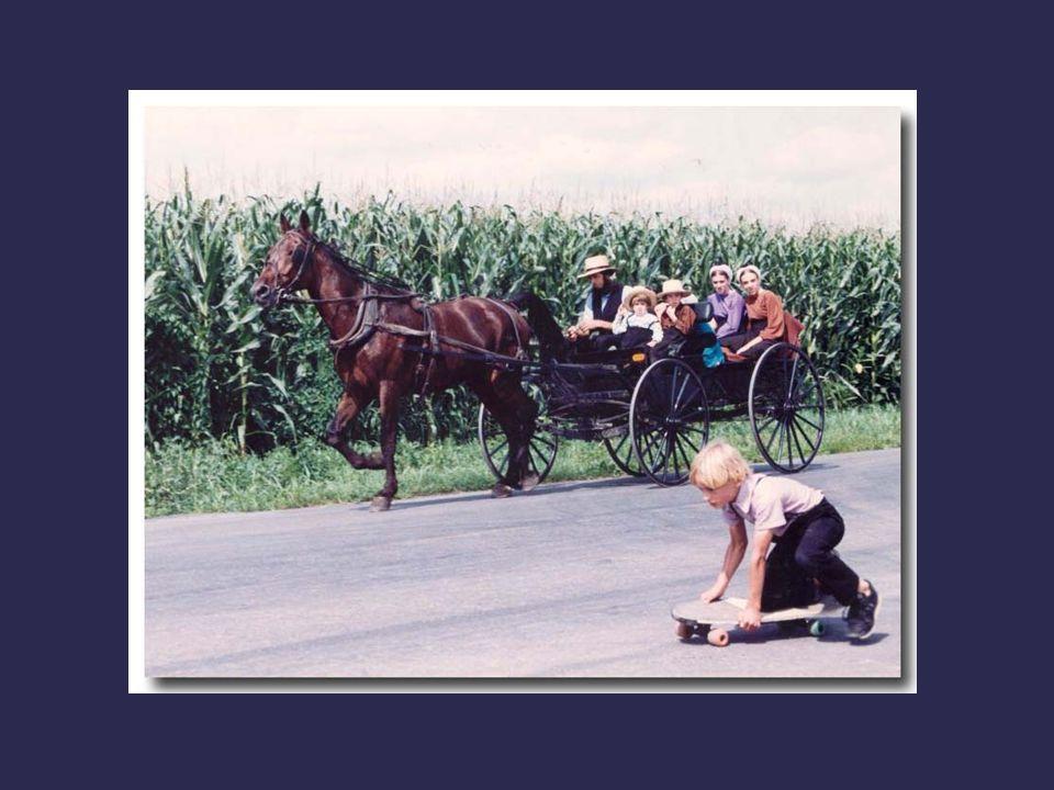 Le système est quasiment autarcique. Par exemple, les Amish refusent la sécurité sociale parce qu'ils considèrent qu'il n'est pas souhaitable d'être a