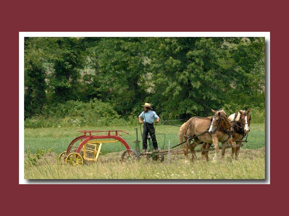 Il faut emprunter les petits chemins qui parcourent la campagne du comté de Lancaster. Tout y est soigné. La terre est entretenue avec amour et respec
