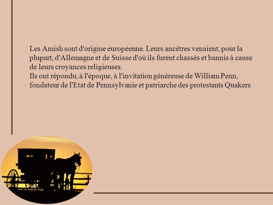 Chez les Amish le cheval est un compagnon vénéré et indispensable.