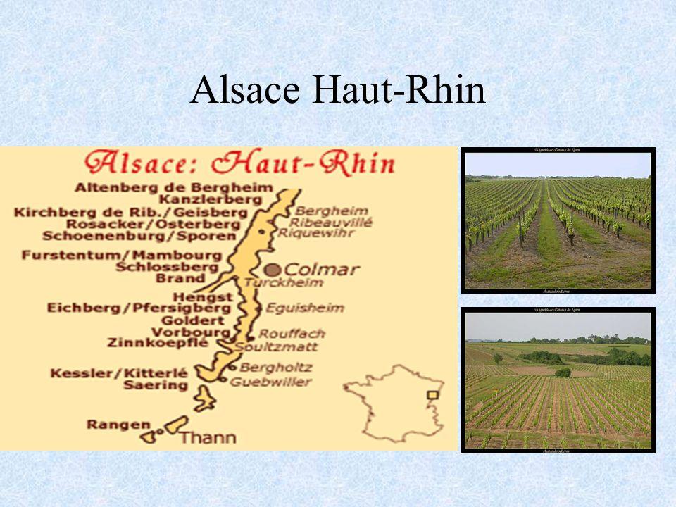 Riesling Le Riesling est cultivé principalement pour les vins d Alsace.