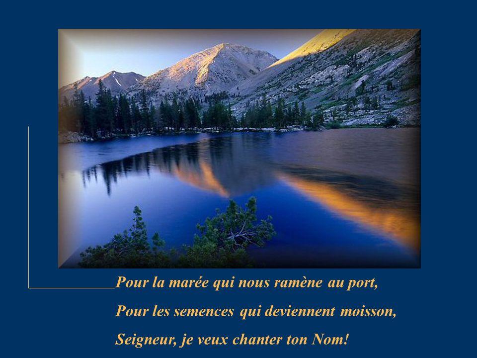 Pour la marée qui nous ramène au port, Pour les semences qui deviennent moisson, Seigneur, je veux chanter ton Nom!
