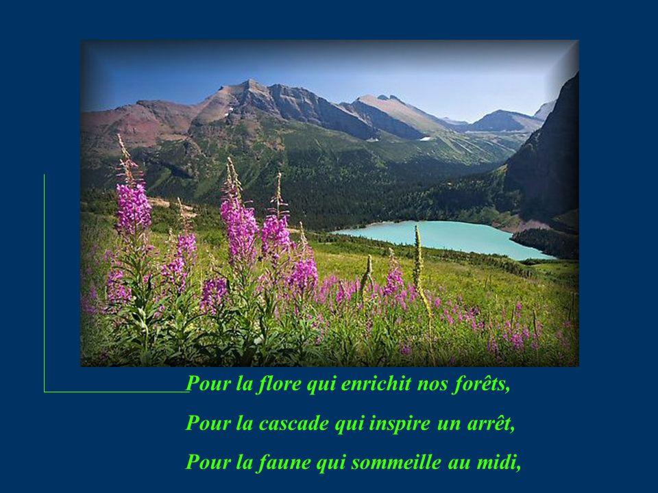Pour la flore qui enrichit nos forêts, Pour la cascade qui inspire un arrêt, Pour la faune qui sommeille au midi,