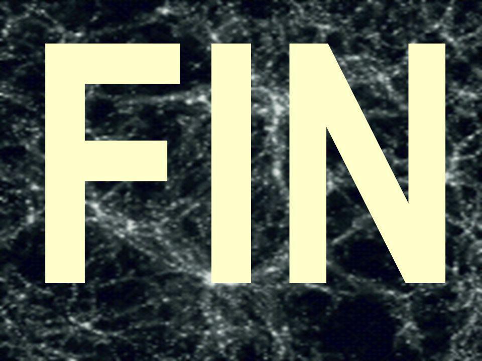 88 FIN