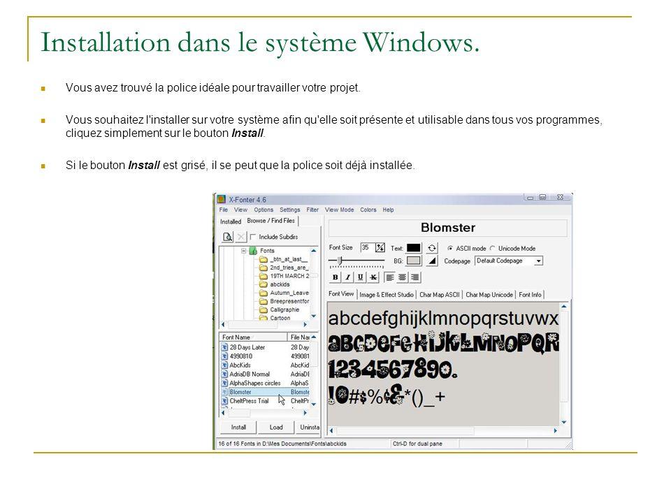 Installation dans le système Windows.