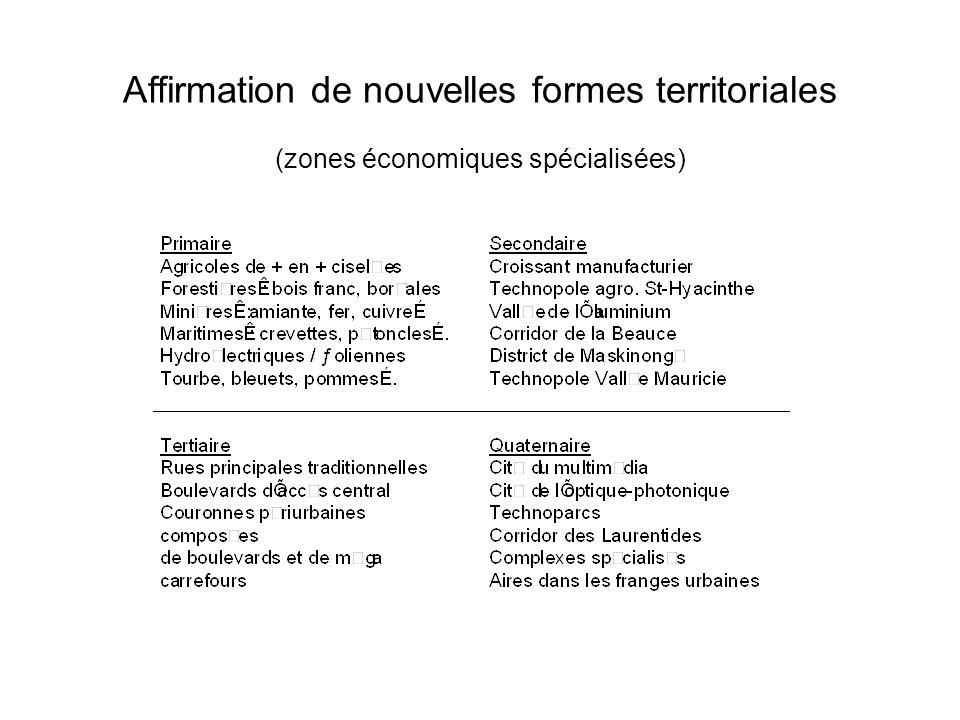 Affirmation de nouvelles formes territoriales (zones économiques spécialisées)