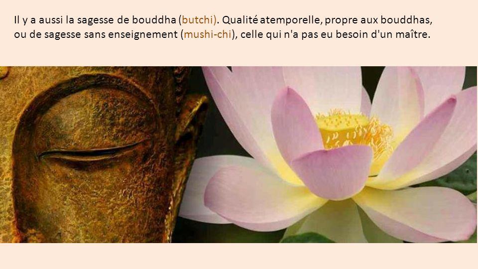 Il y a aussi la sagesse de bouddha (butchi).