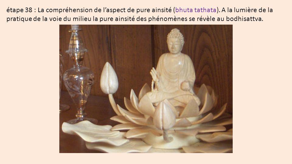 étape 38 : La compréhension de laspect de pure ainsité (bhuta tathata).