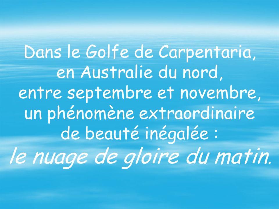 Dans le Golfe de Carpentaria, en Australie du nord, entre septembre et novembre, un phénomène extraordinaire de beauté inégalée : le nuage de gloire du matin.