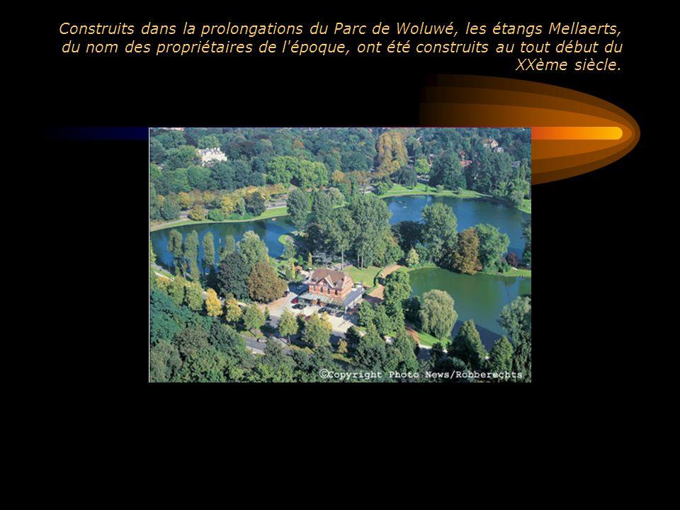 Construits dans la prolongations du Parc de Woluwé, les étangs Mellaerts, du nom des propriétaires de l'époque, ont été construits au tout début du XX