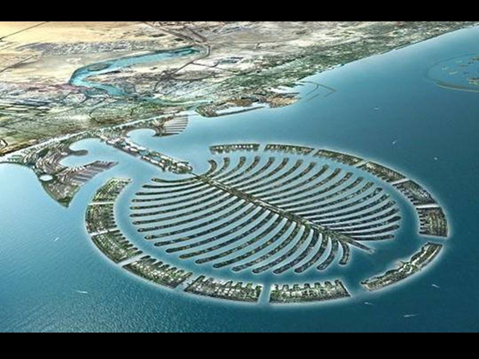 Lîle en forme de palmier de Dubai a été loeuvre dune technologie hollandaise.