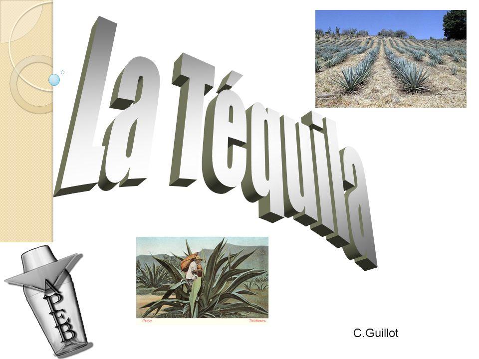 C.Guillot