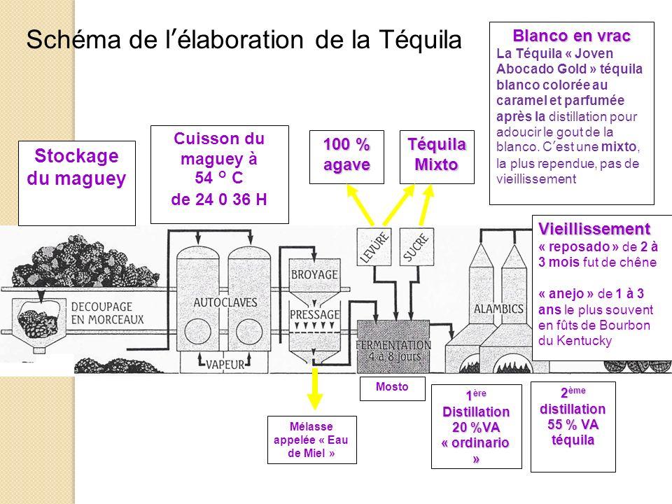 Schéma de lélaboration de la Téquila Stockage du maguey Cuisson du maguey à 54 ° C de 24 0 36 H 100 % agave Téquila Mixto Mélasse appelée « Eau de Mie