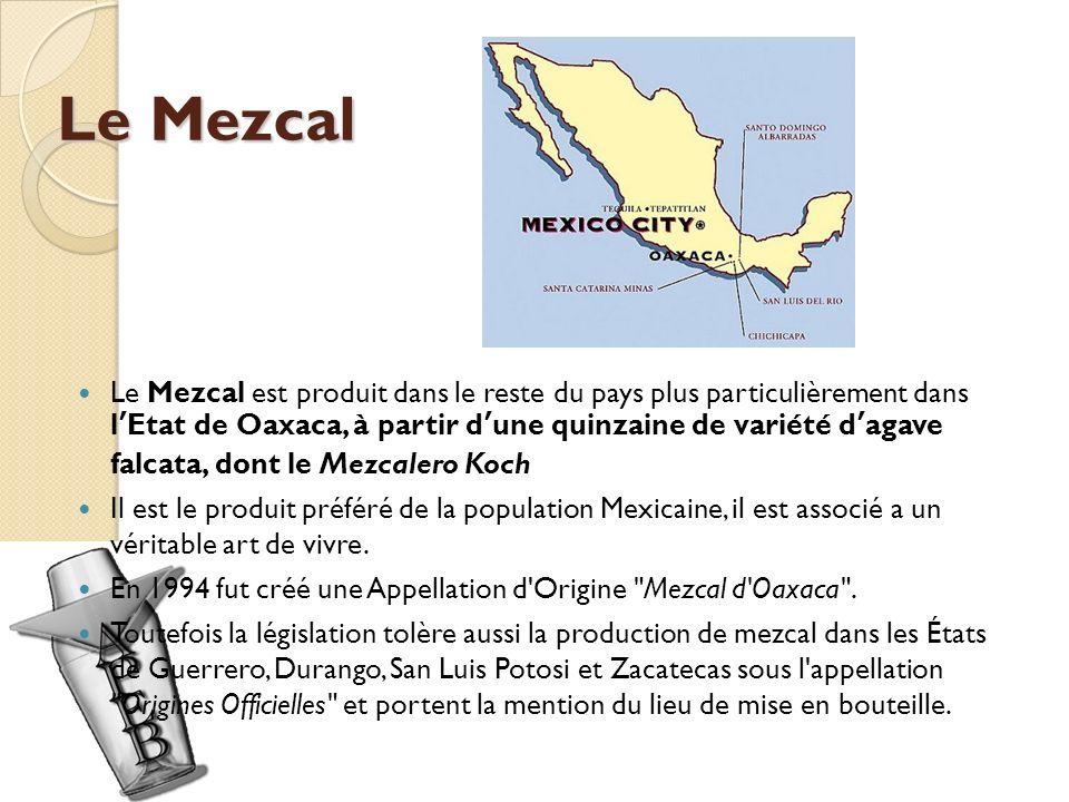 Le Mezcal Le Mezcal est produit dans le reste du pays plus particulièrement dans lEtat de Oaxaca, à partir dune quinzaine de variété dagave falcata, dont le Mezcalero Koch Il est le produit préféré de la population Mexicaine, il est associé a un véritable art de vivre.