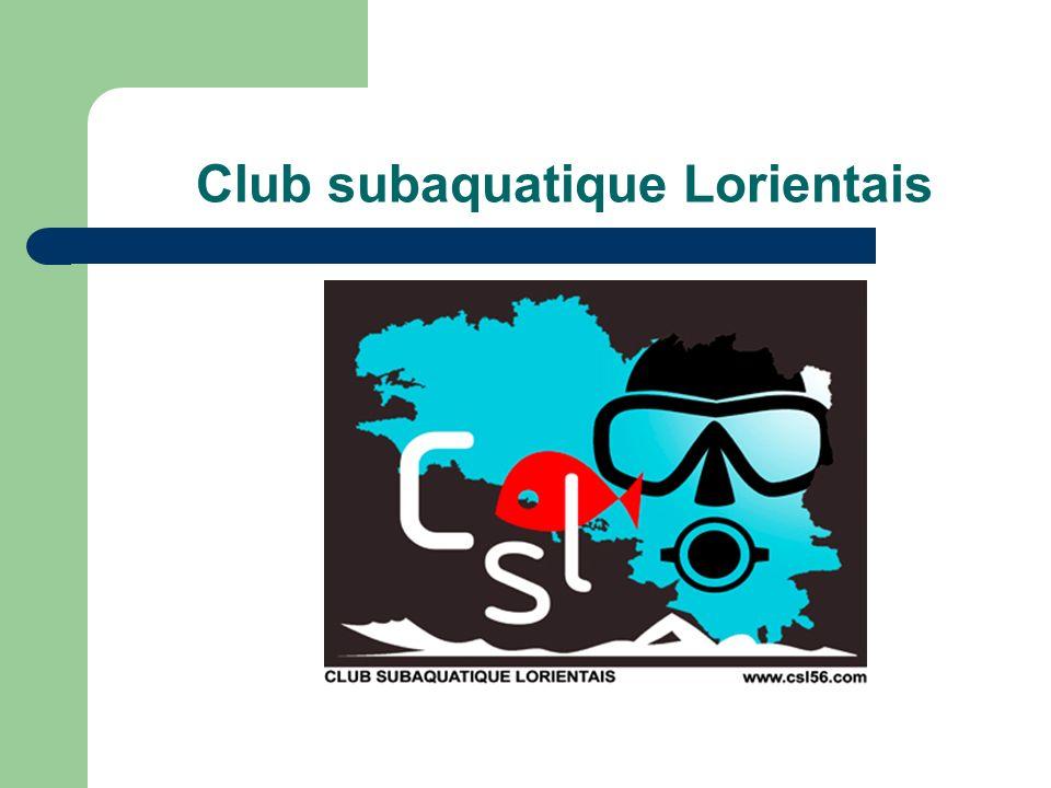 Assemblée Générale - Saison 2007/2008 Lorient – 22/11/2008 Commission Apnée du CSL Saison 2008/2009 Formation N1 (Stagiaire N1 bouteille) – 7 inscrits Formation N1-N2 - 7 inscrits Formation N3 – 7 inscrits Formation de cadre ??.