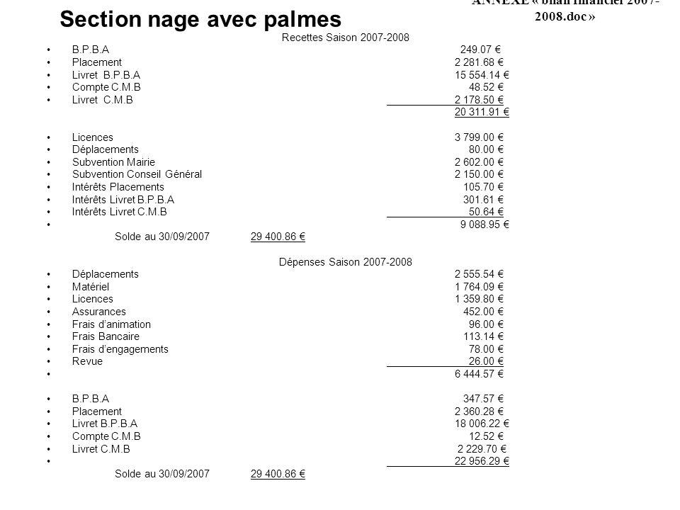 Section nage avec palmes Recettes Saison 2007-2008 B.P.B.A 249.07 Placement2 281.68 Livret B.P.B.A15 554.14 Compte C.M.B 48.52 Livret C.M.B2 178.50 20