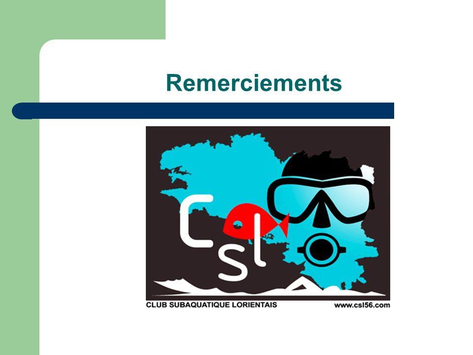 Assemblée Générale - Saison 2007/2008 Lorient – 22/11/2008 Commission Apnée du CSL Formation de cadre 2 moniteurs en formation, 2 certifiés (MEF1) 28 séances en piscine (Bois du château) 4 séances en fosse (Moustoir) 16 séances en petit bassin (Moustoir) 6 séances de théorie 6 séances en milieu naturel