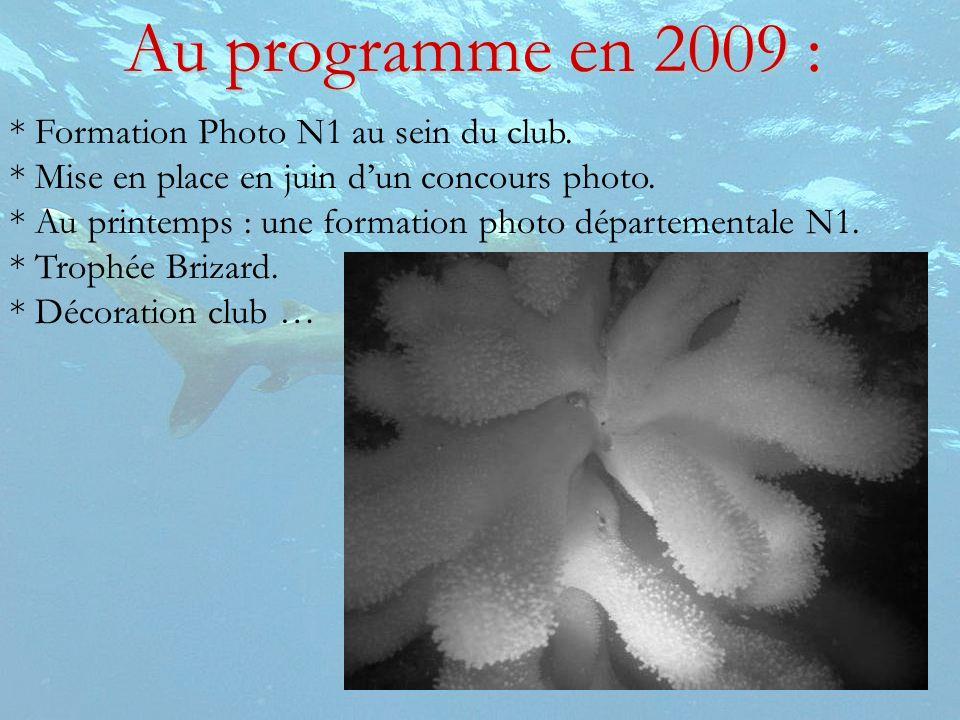 * Formation Photo N1 au sein du club. * Mise en place en juin dun concours photo. * Au printemps : une formation photo départementale N1. * Trophée Br