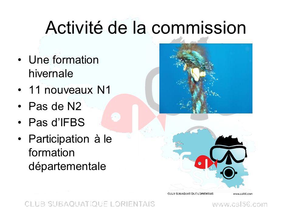Activité de la commission Une formation hivernale 11 nouveaux N1 Pas de N2 Pas dIFBS Participation à le formation départementale