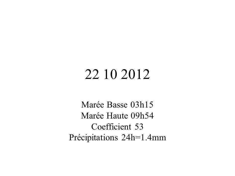 22 10 2012 Marée Basse 03h15 Marée Haute 09h54 Coefficient 53 Précipitations 24h=1.4mm
