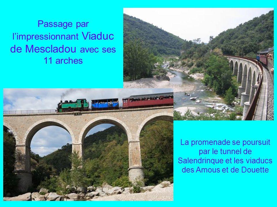 A proximité de la bambouseraie, la gare du Cévenol Quelque peu enfumés par le « tortillard des Cévennes », balade à travers la vallée des Gardons, pou