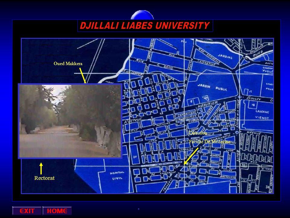 Direction Faculté De Médecine Rectorat Oued Makkera