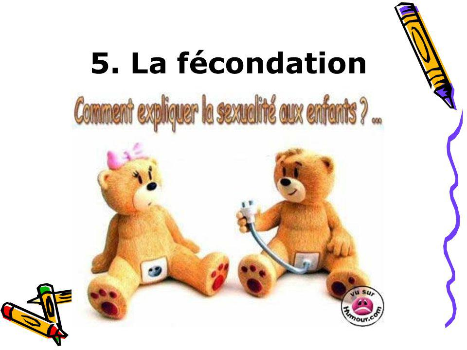 5. La fécondation