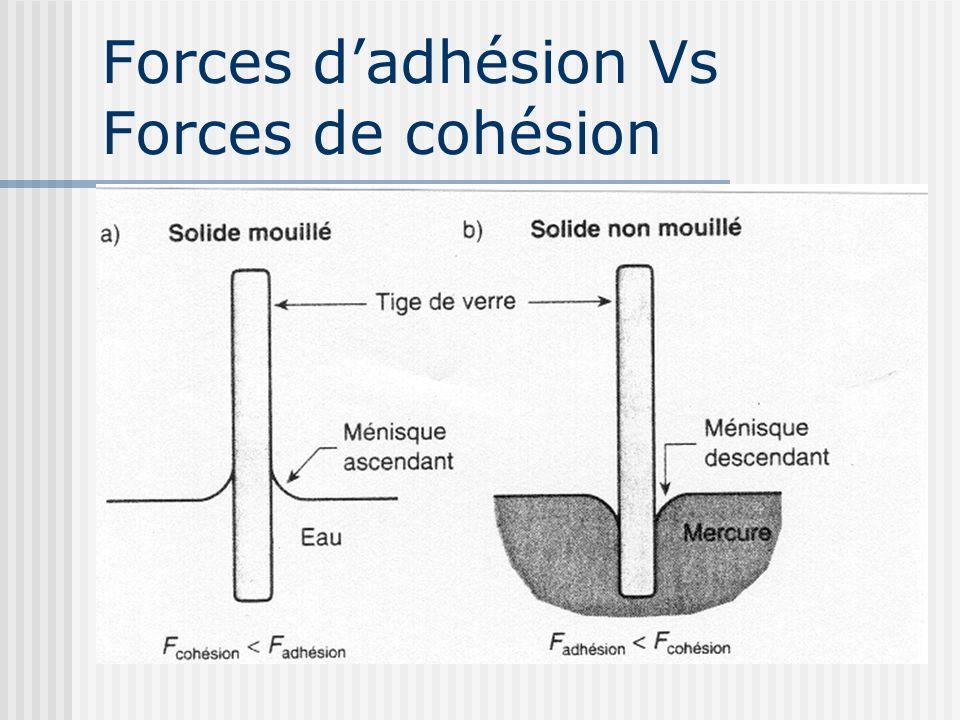 Capillarité (suite) Leau adhère à la paroi interne du tube (F adhésion), puis monte (action de Ts) jusquà ce que: F ascension = W colonne deau Permet de déterminer la remontée capillaire hc.