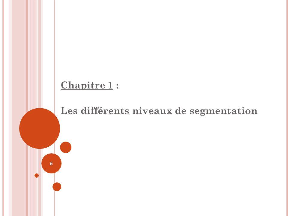 Chapitre 1 : Les différents niveaux de segmentation 6