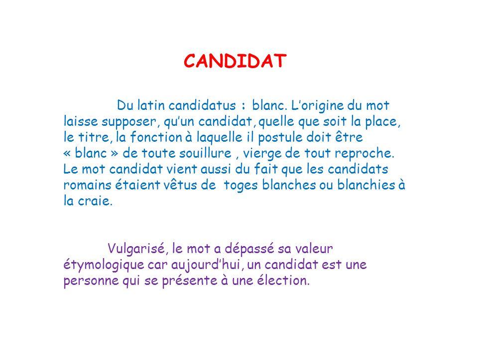 CANDIDAT Du latin candidatus : blanc. Lorigine du mot laisse supposer, quun candidat, quelle que soit la place, le titre, la fonction à laquelle il po