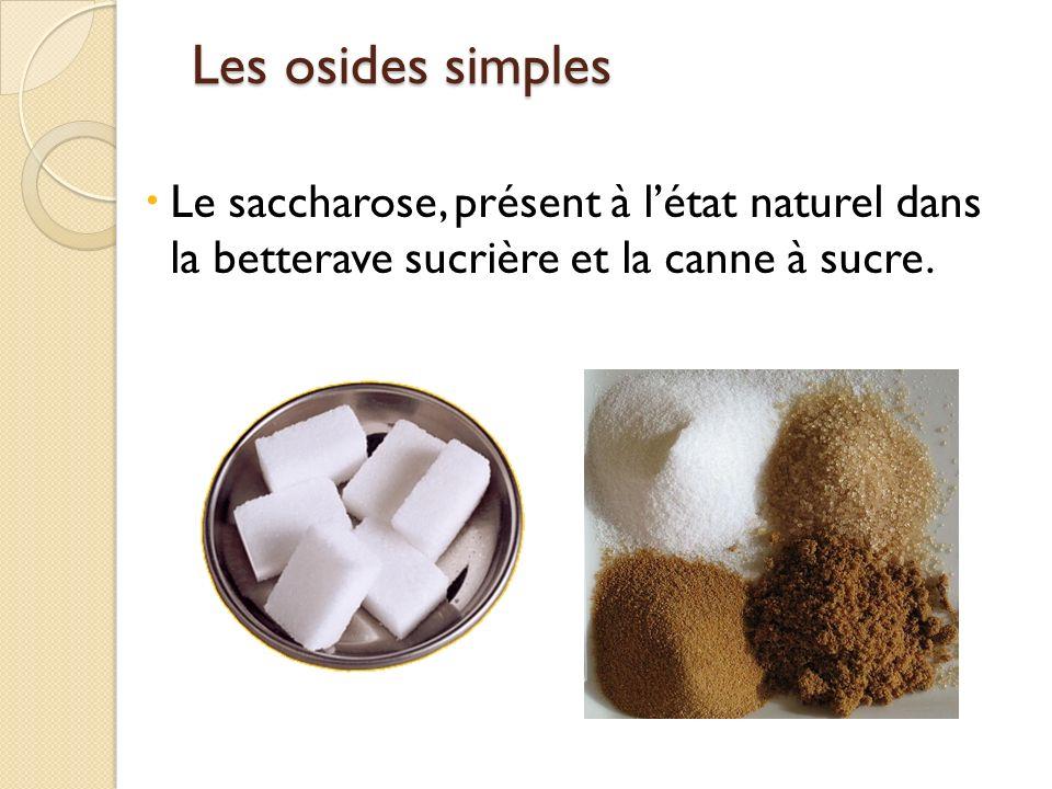 Les osides simples Les osides simples Le saccharose, présent à létat naturel dans la betterave sucrière et la canne à sucre.